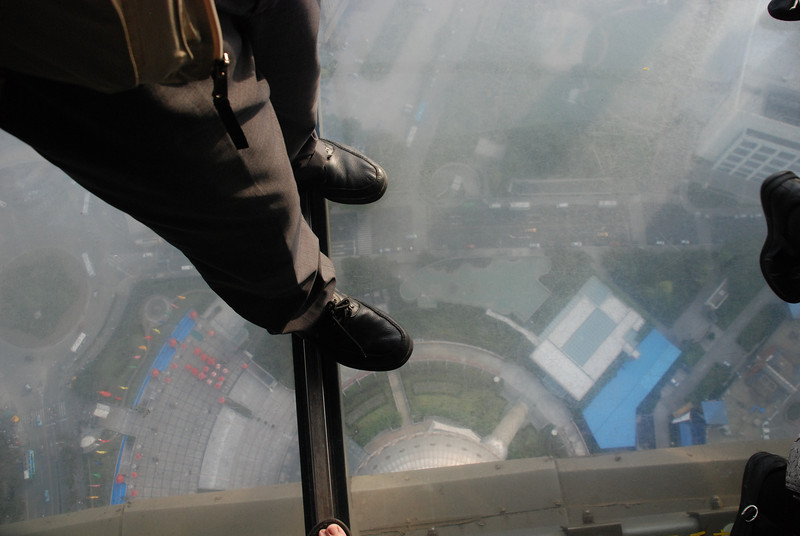 View Down from the Oriental Pearl Tower