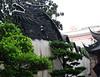 Dragon in Shanghai's Yuyuan Garden of 1559 Ming Dynasty 2