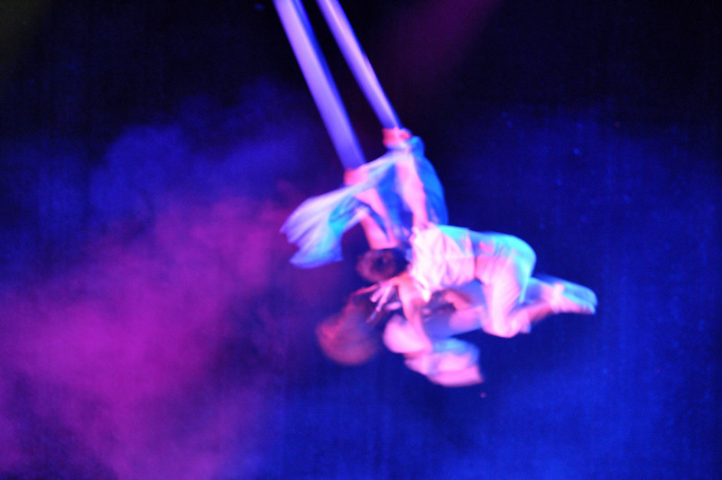 Shanghai Acrobatic Show 10