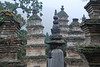 China, Shaolin 30 Pagoda Forest