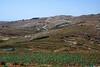 Judean hillside 1