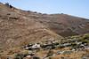 Judean hillside 2