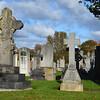 Ayr Cemetery 1