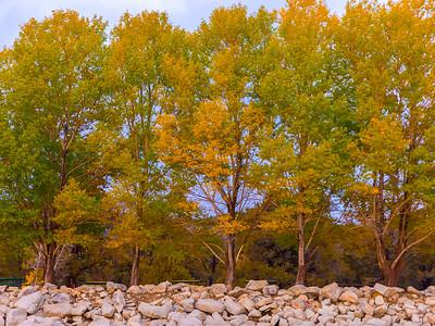 Fall colors in Big Bear