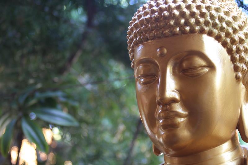 Buddist temple (257)