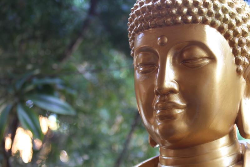 Buddist temple (259)