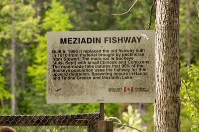 Meziadin fishway