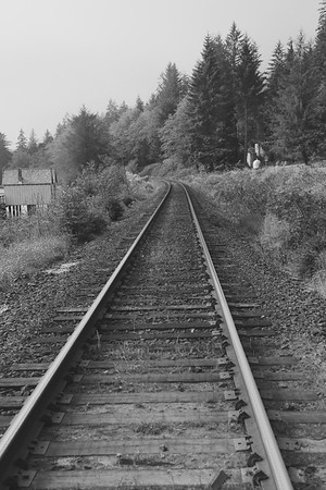 Railroad crossing at North pacific cannery