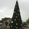 Public Christmas Tree in Parque Juan Santamaria