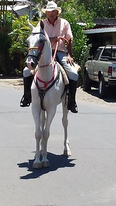 Coming to Town on Horseback