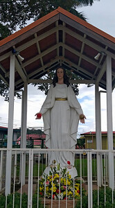 La Virgen de las Rosas
