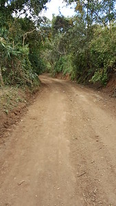 Much of road is dirt, some gravel