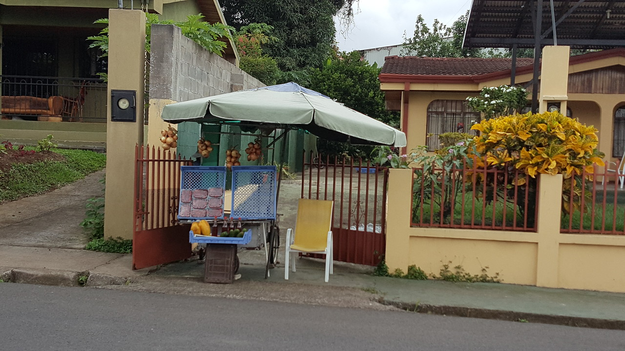 Fruit Vendor in Front of Her House