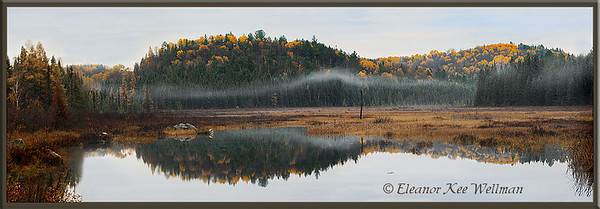 Algonquin Park, Opeongo Road, Pano