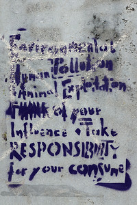 Animal Exploitation Graffiti in Amsterdam