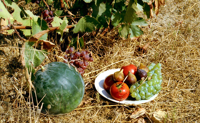Fruit in Agios Prokopios