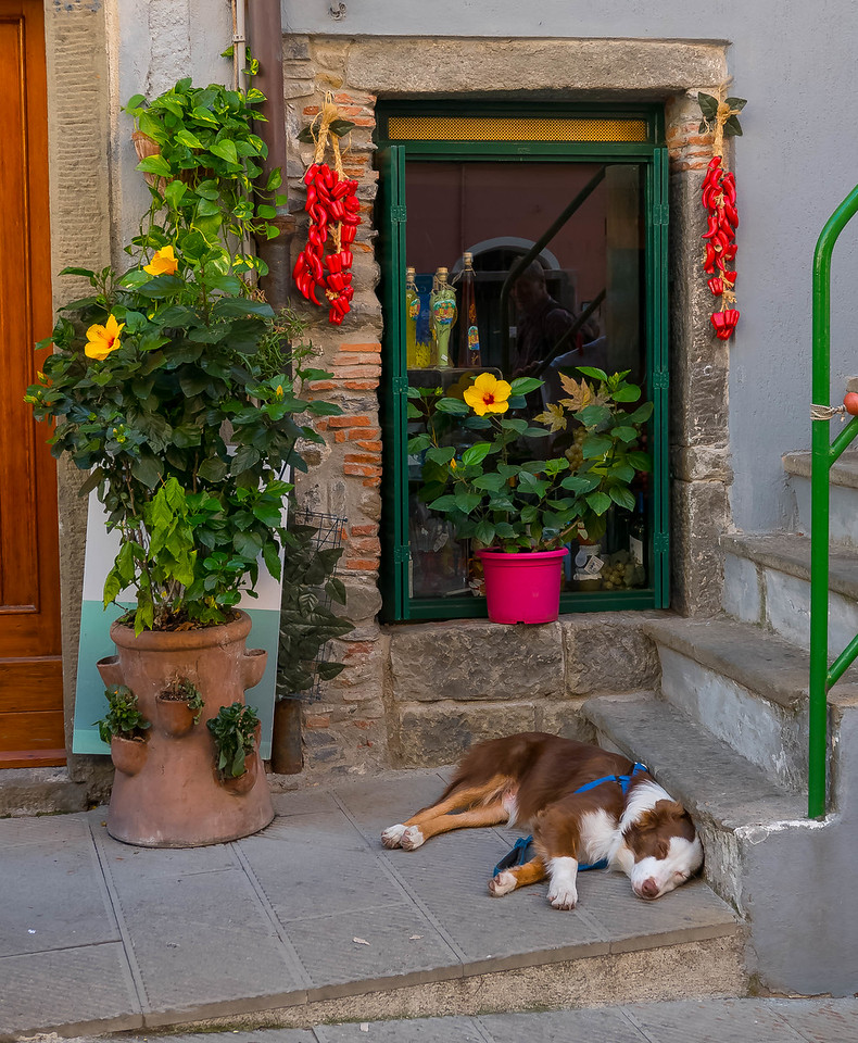 Pup & Peppers, Riomaggiore, Cinque Terre, Italy