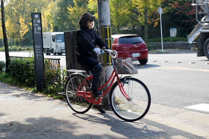 Lady on a Bicycle in Kyoto