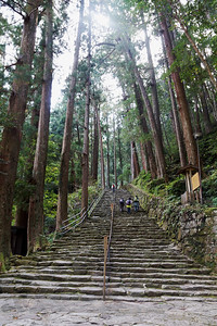 Steps on the Kumano Kodo Route near Nachi Falls