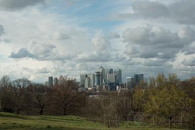 Greenwich - trees and skyscrapers