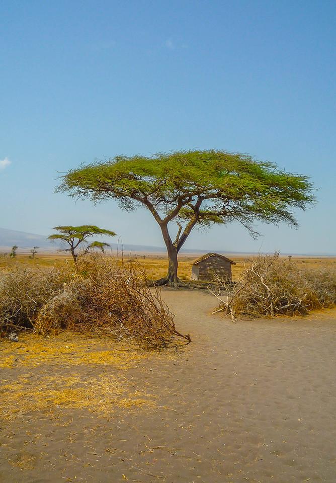 Masai Corral, Serengeti