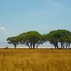 Ngorongoro Salt Flats 2
