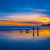 Dog Beach, Coronado 1