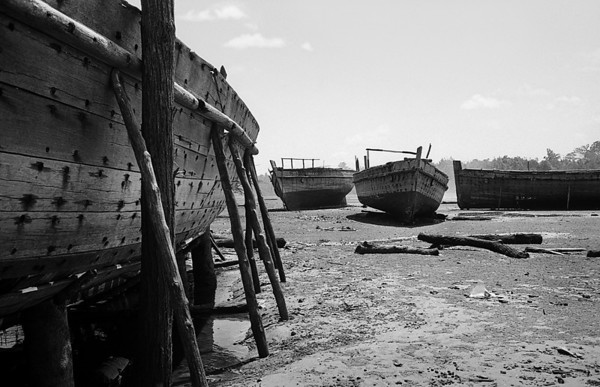 Dhows, Lamu, Kenya