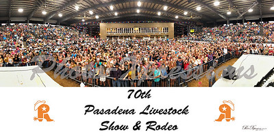 2019 rodeo crowd from stage-full