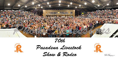 2019 rodeo crowd from stage-full-rotated R-30x15