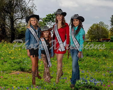queens group western_2354