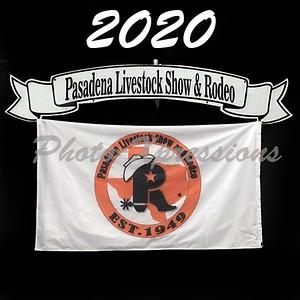 2020-PLSR web logo