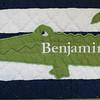 2012newbornbabyben005