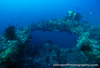 The Arches - Father's Reef, PNG