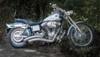2002_Harley_Dyna_Wide_Glide