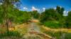 Brazos_River_Overflow_Cove