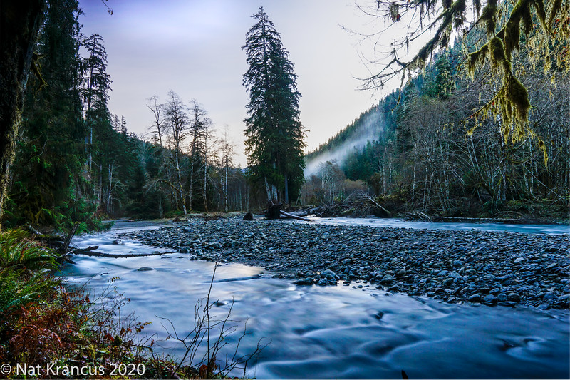 East Fork Quinault River, Olympic National Park, Washington State, November 2018