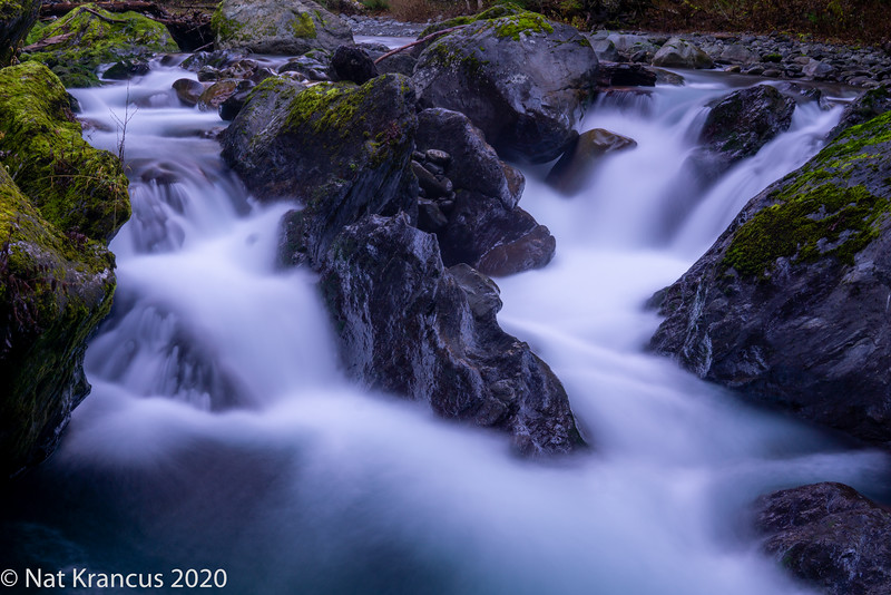 North Fork Skokomish River, Olympic National Park, Washington State, November 2018