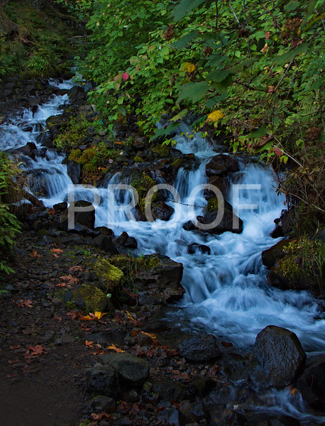 Little waterfall by Multnomah Falls