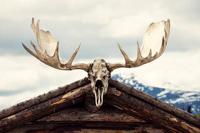 Alaska 0182