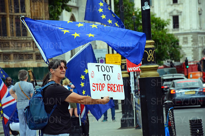 SODEM demonstrators outside the Houses of Parliament.