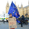 EU Remain protestors outside the Houses of Parliament.