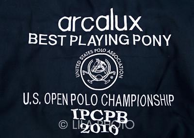 Arcalux_004