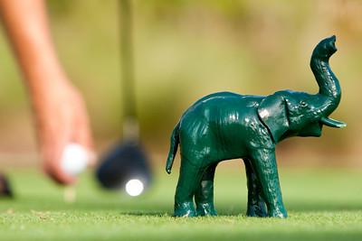Golf_016