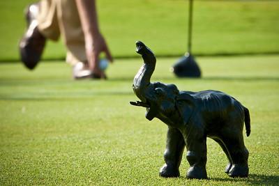Golf_009