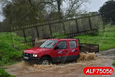 ALF75056