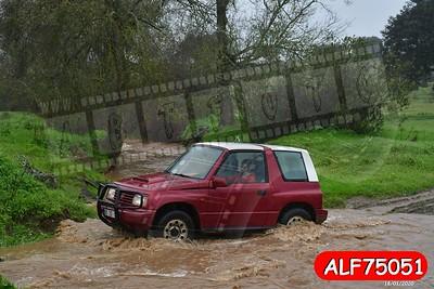 ALF75051
