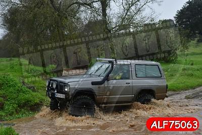 ALF75063