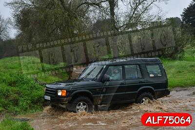 ALF75064