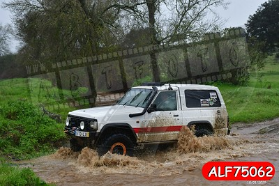 ALF75062